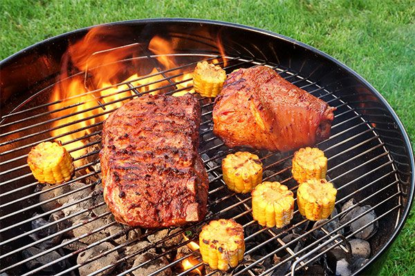 6 Best Weber BBQ Grills For Summer
